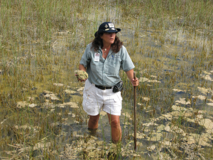 Our Everglades tour guide