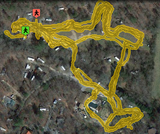 My trail I walked today!