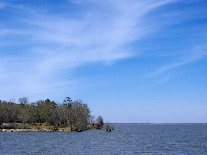 Lake Marion is huge and offers some good fising.